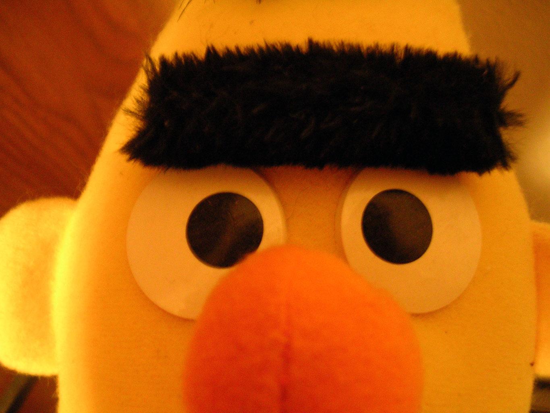 Bert-771629[1]
