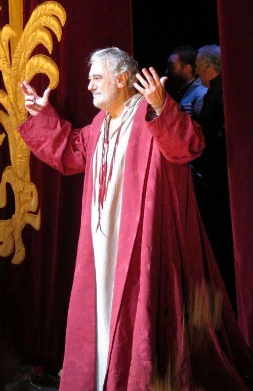 Domingo gala roh 271011 130 (518x800)