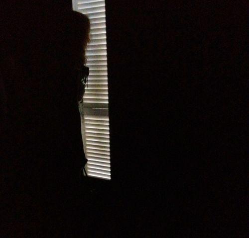 Metamorphosis Titian 003 (800x767)