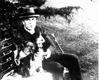 Dog elgar 2