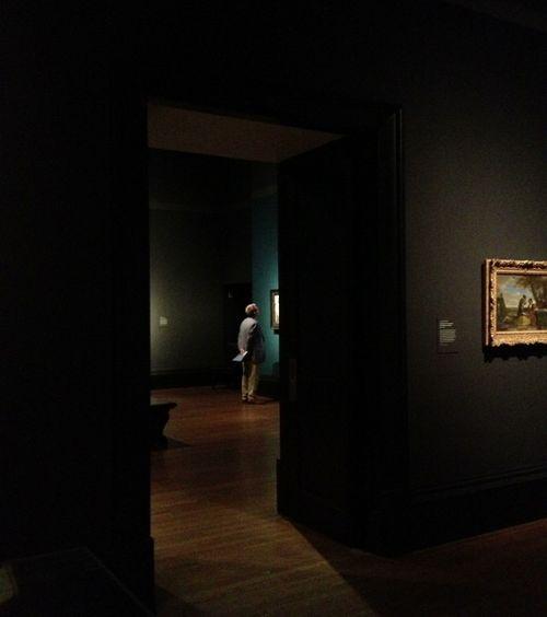 Vermeer aam 020713 008 (567x640)