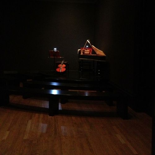 Vermeer aam 020713 002 (637x640)