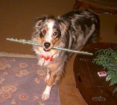 Dog_flute[1]