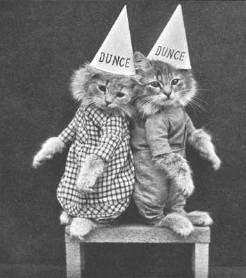 Vintage+Pictures+of+Cats+And+Dogs+Dressed+As+People+(10)[1]
