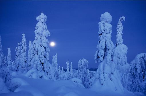 Winternight_11
